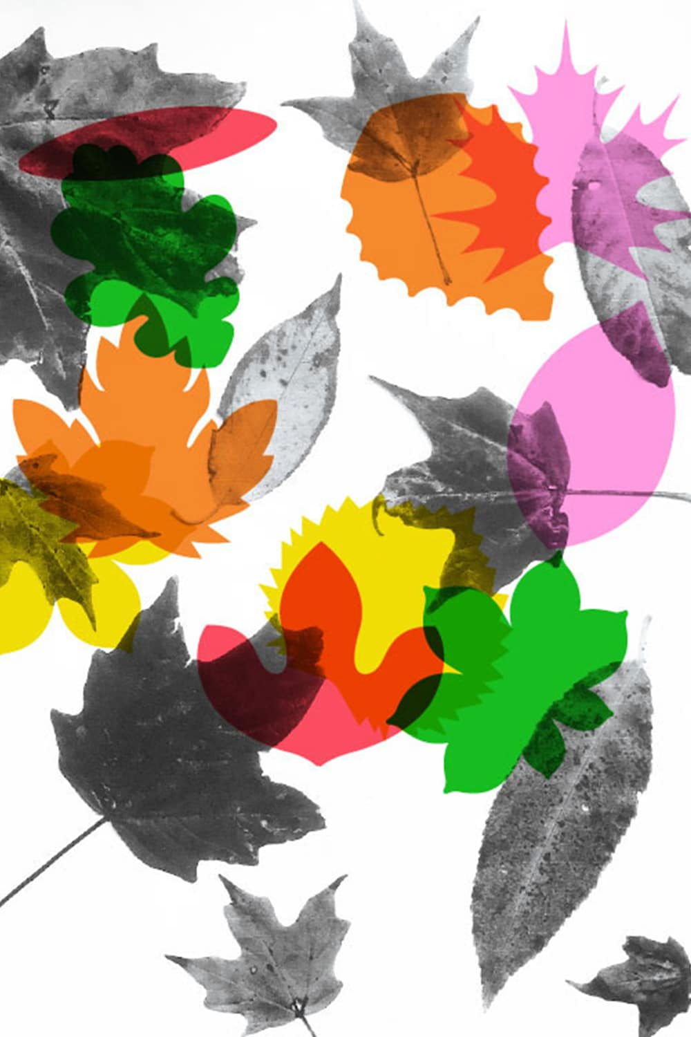 An Autumn Leaf Kids Printable With Tons Of Uses We Made A Coloring Page
